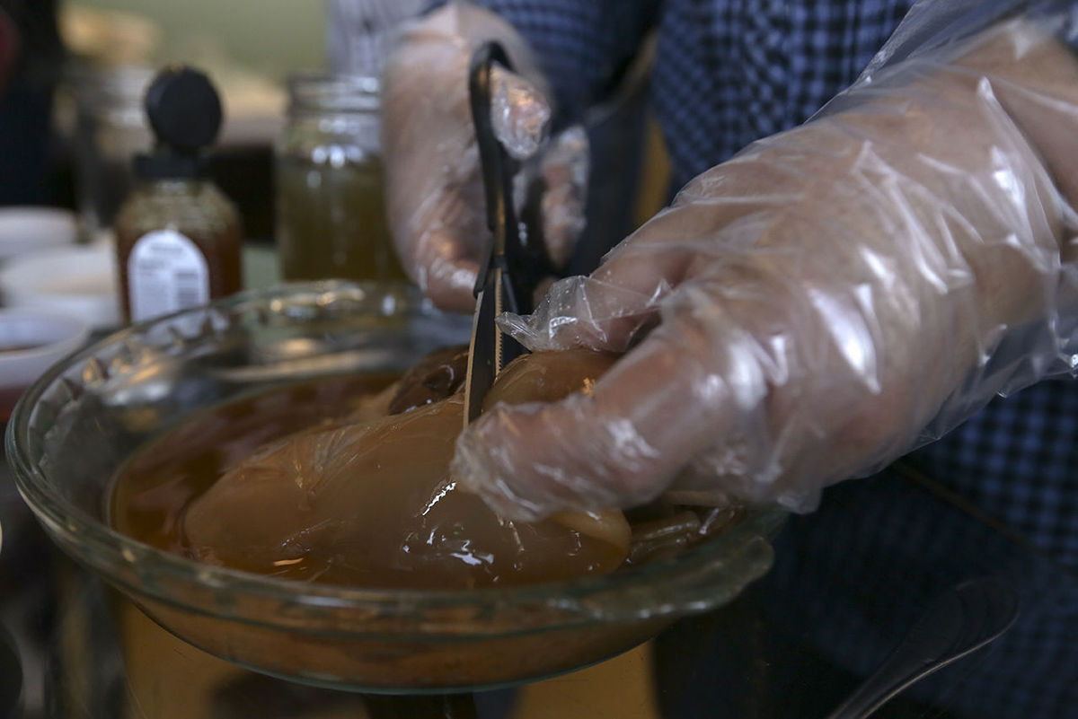 Julia Quist cuts a piece of a symbiotic colony of bacteria and yeast, known as SCOBY, to use to make her kombucha during a class at Sipping Streams Tea Company Thursday, March 24, 2016