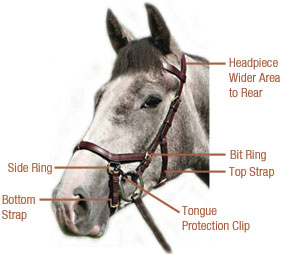 Parts of the Rambo Micklem Bridle