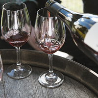 Barrel to Bottle - Pinot Noir