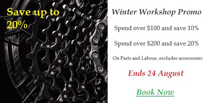 Winter Workshop Promo
